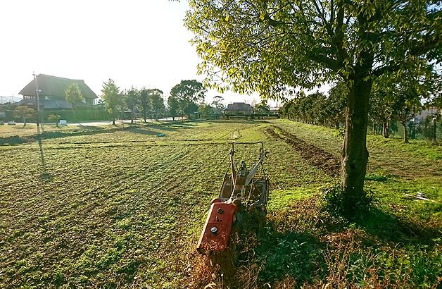 干拓の里体験農園